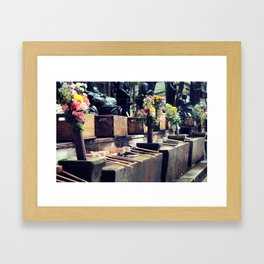 Water Dippers  Framed Art Print