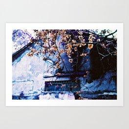CONDEMNED / FINAL SPRING - Lomography Purple XR 100-400 - 35mm film Art Print