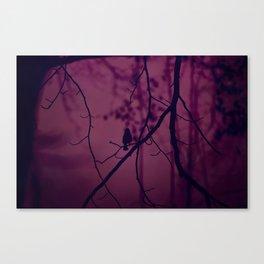 It's Unknown Canvas Print