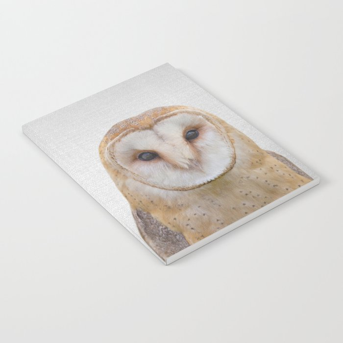 Owl - Colorful Notebook