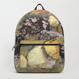 Natures Art 2 Backpack
