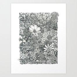 Boxed Flowers Art Print
