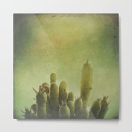 Cactus in my mind Metal Print