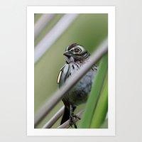 Cybird Art Print