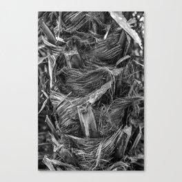 Textured Bark 2.8 Canvas Print