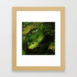kiss the frog Framed Art Print