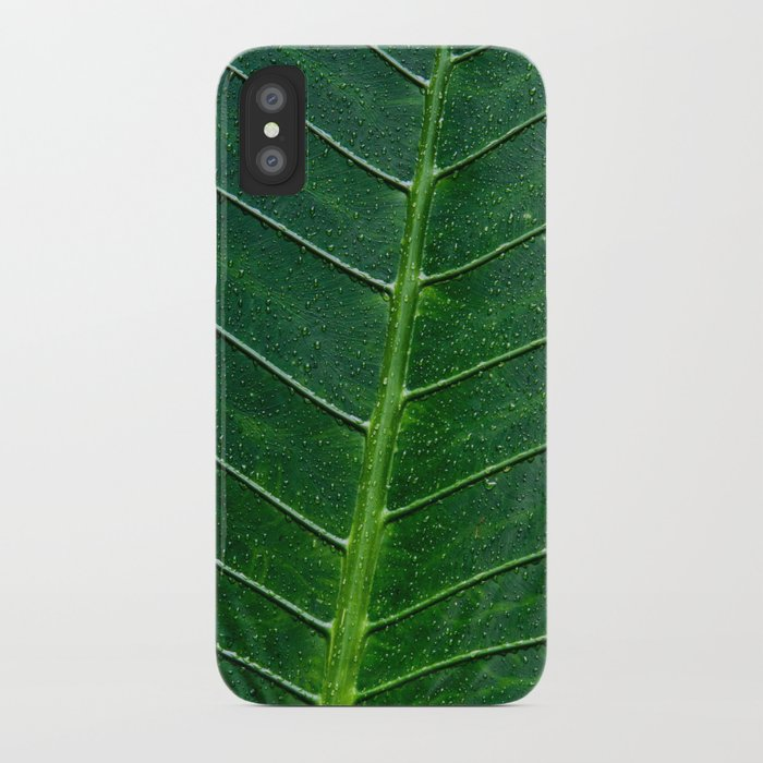 Giant Upright Elephant Ear, Night-scented Lily (Alocasia Odora) iPhone Case