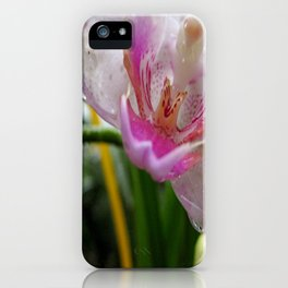 Orchid Mornings iPhone Case