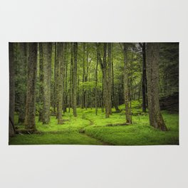 A Woodland Path in Cades Cove Rug