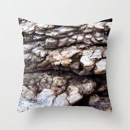 Wood Texture #1 Throw Pillow