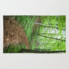 Into The Woods - Woodland Spring Path Rug