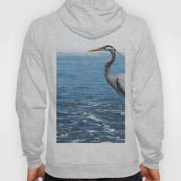 Great Blue Heron on the Pacific Coast in Costa Rica Hoody