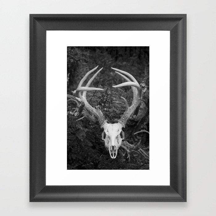 Deer Skull Black & White Framed Art Print