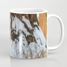 Sequoia Cone in Snow Coffee Mug