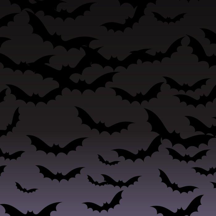 Bats Leggings