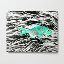 Fish on Fur V Metal Print