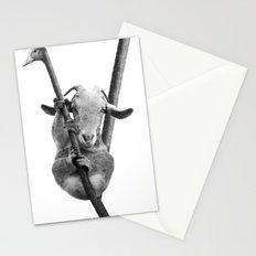 Kolpretto Stationery Cards
