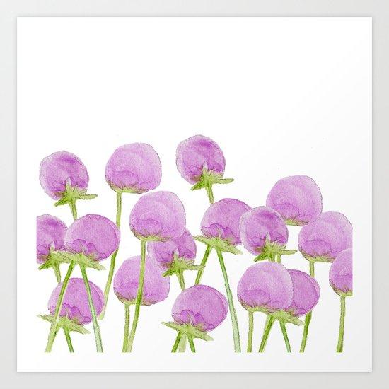 Allium Art Print