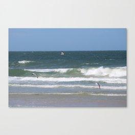 Birds Flying on the Beach Canvas Print