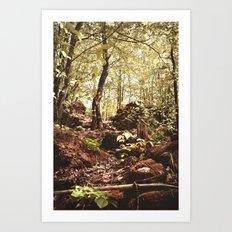 Slope Art Print