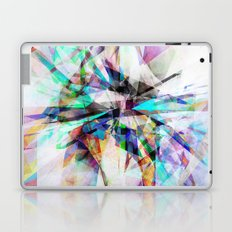 Graphic 12X Laptop & iPad Skin