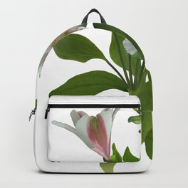 Peruvian Lily Backpack