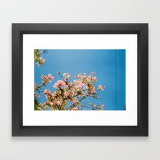 Flowers on blue Framed Art Print
