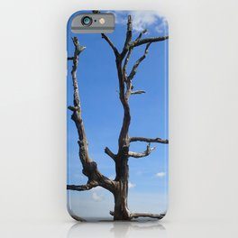 Dead Tree against a sky with clouds iPhone Case