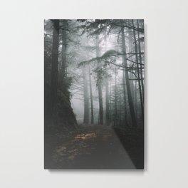 Butano Metal Print