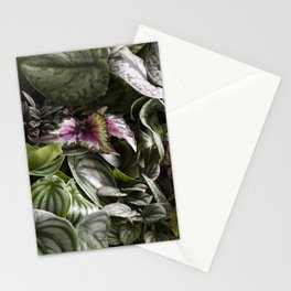 Moody Plants  |  The Houseplant Collection Stationery Cards