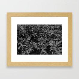 leavs Framed Art Print