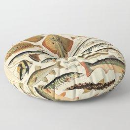 adolphe millot poissons  Floor Pillow