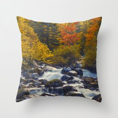 Autumn River II Throw Pillow