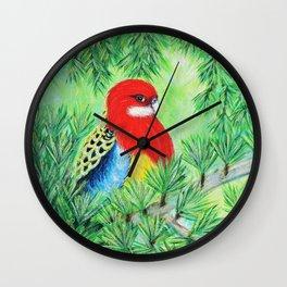 Rosella Bird Painting Wall Clock