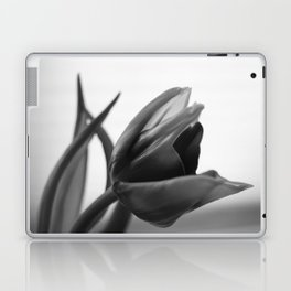 Tulip Blooming In Black And White Laptop & iPad Skin