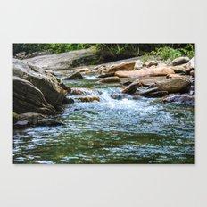 Tennessee Creek Canvas Print