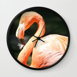 colombus zoo Wall Clock