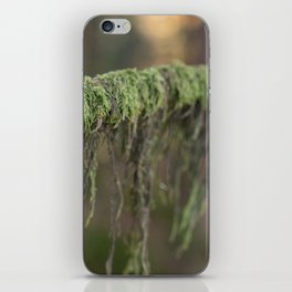 Moss on a branch iPhone Skin