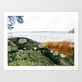 Origami cranes on the rock with lake view Art Print