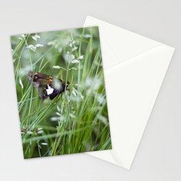 Sliver spotted skipper moth Stationery Cards