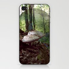 Secret Place iPhone & iPod Skin