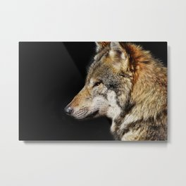 Wolf - The Alpha animal Metal Print