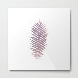Photo fern 2 / art Metal Print