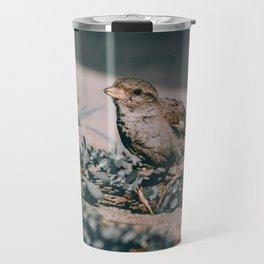 Summer Sparrow. Bird Photograph Travel Mug
