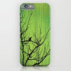 Beauties & mysteries iPhone 6s Slim Case