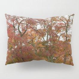 Autumn in Nara Japan Pillow Sham