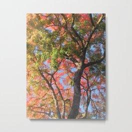Autumn Leaves in California #2 Metal Print