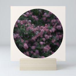 Rose Garden XI Mini Art Print