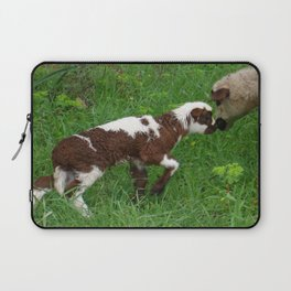 Cute Brown and White Lamb with Ewe  Laptop Sleeve