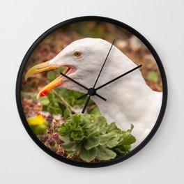 Gull Call Wall Clock